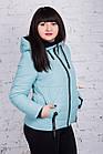 Брендовая женская куртка AMAZONKA на весну модель 2018 - (кт-252), фото 8