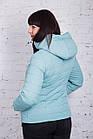 Брендовая женская куртка AMAZONKA на весну модель 2018 - (кт-252), фото 9