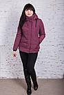 Женская куртка батальных размеров от производителя в Украине - модель весна 2018 - (кт-234), фото 9