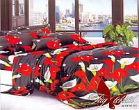 Комплекты постельные полуторные.Постельное белье для дома. Полуторный комплект постельного белья. Постель 1.5
