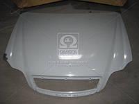 Капот GEELY CK 06- (производство TEMPEST) (арт. 024 0205 280C), AGHZX