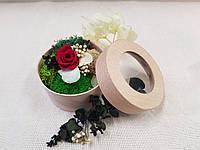 Стабилизированные цветы Композиция «Мидл» с эвкалиптом, фото 1