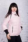 Женская молодежная ветровка от производителя - весна 2018 - (кт-240), фото 8