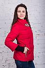 Женская молодежная ветровка от производителя - весна 2018 - (кт-240), фото 5