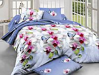 Двуспальный комплект постельного белья евро 200*220 хлопок  (6375) TM KRISPOL Украина