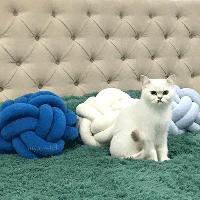 Декоративная подушка узел, велюр, морской/молочный/небесно-голубой