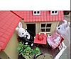 """Загородный Домик """"Животные Флоксовые"""" Happy Family Ps, фото 8"""