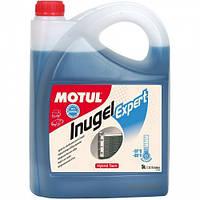 Антифриз автомобильный Motul Inugel Expert -37°C, 5л.