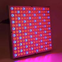 Светодиодная фито-панель для растений Oasisled 45W 220V Full Spectrum GR - 45