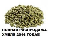 2016 год