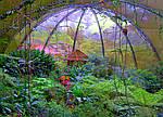 Природный Рай Коста Рики  , фото 5
