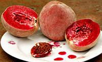 Саджанці персика ЭРИТРОКАРПА (дворічний) пізнього строку дозрівання
