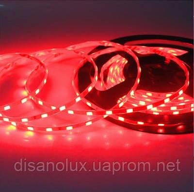 Светодиодная  LED лента  SMD 5630 60LED/m 15W/m  красный 12V  IP20   5м