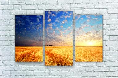 """Модульна картина """"Захід над пшеничним полем"""""""