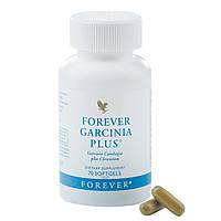 Гарсиния Плюс для Снижения Аппетита, Форевер, США, Forever Garcinia Plus, 70 капсул