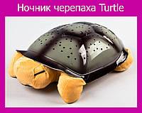 Ночник черепаха Turtle