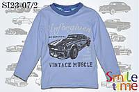 Реглан для мальчика детский 100% хлопок Турция р.104,110,116,122 SmileTime Vintage Muscle, светло-голубой