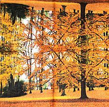 Салфетки для декупажа Осенний лес 70