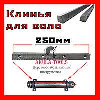 L-250 мм Клинья к фуговальному валу