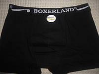 Мужские боксеры х/б размер L,от 2 шт-30 гр, фото 1