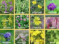 Органическое земледелие или экоземледелие