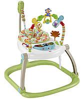 Портативное кресло-прыгунки Джунгли Fisher-Price (CHN38)