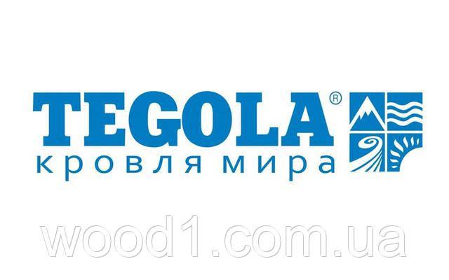 """Семинар от компании """"Тегола Украина»"""