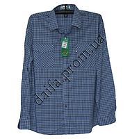 Мужская котоновая рубашка A26-2b (46-54р-р; длинный рукав) оптом со склада в Одессе