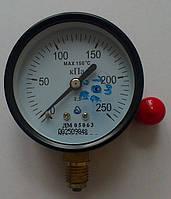 Манометр ДМ 05063 250 кПа, фото 1