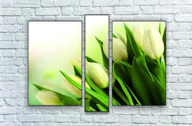 """Модульна картина """"Білі тюльпани"""""""