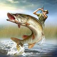 Хочете ловити в 4 рази більше риби за один і той же час?