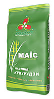 Семена кукурузы ДМС Лорд, ФАО 190