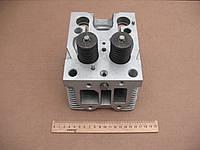 Головка цилиндр. Д-144,Д-21 (Д37-1003008-Б5), фото 1