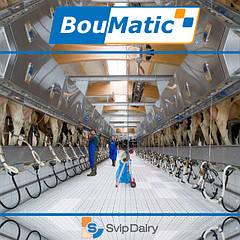 Доильные залы BouMatic