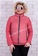 Женская короткая куртка  Fodarlloy 873, фото 1