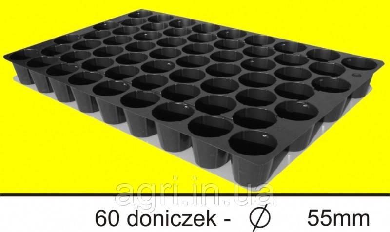 Кассета 60 ячеек (70шт/упак) Польша