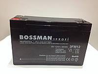 Аккумулятор Bossman Profi 6V 12Ah, фото 1
