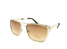 Мужские солнцезащитные очки (9009br)