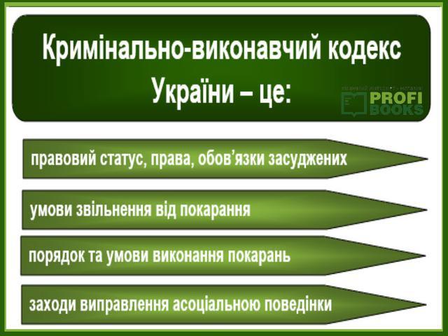 kryminalno_vykonavchyj_kodeks_2