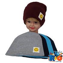 Детская шапка (весна-осень),  двойной трикотаж, размер 48-50 (5 ед в уп)