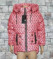 """Куртки детские для девочки """"Бантик"""", фото 1"""