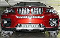 Декоративно-защитная сетка радиатора BMW X6 E71 фальшрадиаторная решетка (ноздри), фото 1