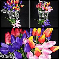 Букет тюльпаны, цвета разные, выс. 64 см., 9 вет., упак. 8 шт., 45/32 (цена за 1 шт. + 13 гр.)