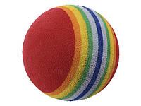 М'ячик для собак Радуга