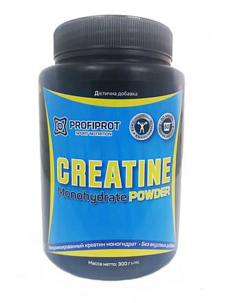 Creatine Monohydrate Powder PROFIPROT 300 g, фото 2