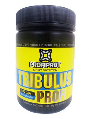 Tribulus Profi PROFIPROT 100 caps*650 mg , фото 2