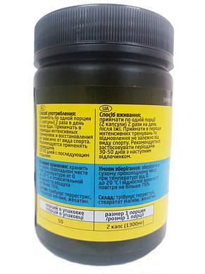 Трибулус Tribulus Profi PROFIPROT 100 caps*650 mg, фото 2