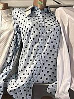 Женская блуза 42-48р горох в ассортименте