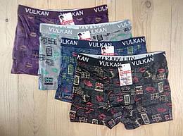 Мужские трусы-боксёры хлопковые VULKAN ассорти 12 шт упаковка разные рисунки ТМБ-1818682