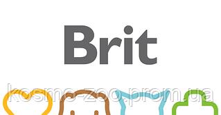 Почему Brit?